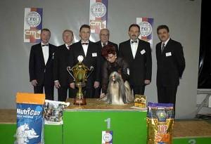 Šampión šampiónů 2007  2
