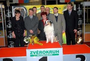2. Hanácká výstava psů  2